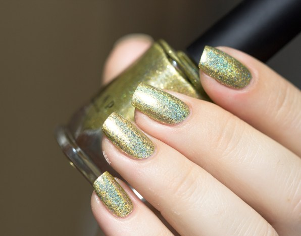 ilnp-summer collection 2015-money bin