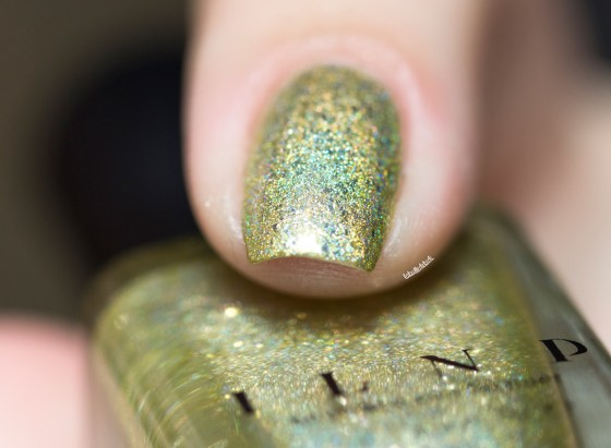 ilnp-summer collection 2015-money bin_5