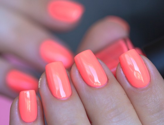 ilnp-summer collection 2015-so coral (2)