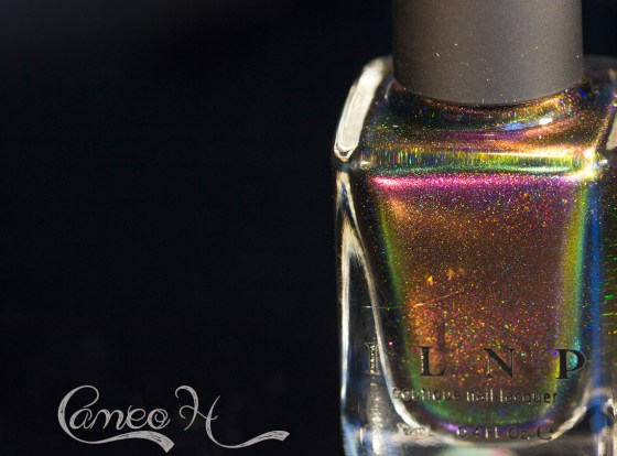 ilnp-fall collection 2015_18