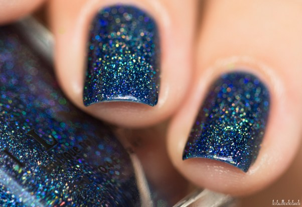 ilnp-after midnight-fall collection 2015_13