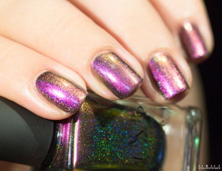 ilnp-cameo(H)-fall collection 2015_17