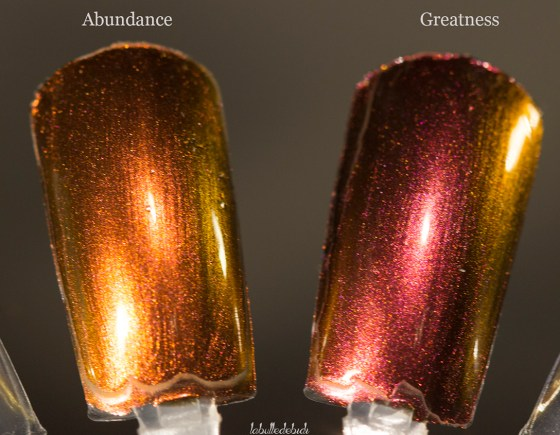 ilnp-compare-fall collection 2015_13