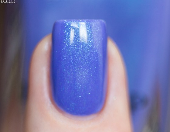ilnp-shimmer 2016-wallflower_3