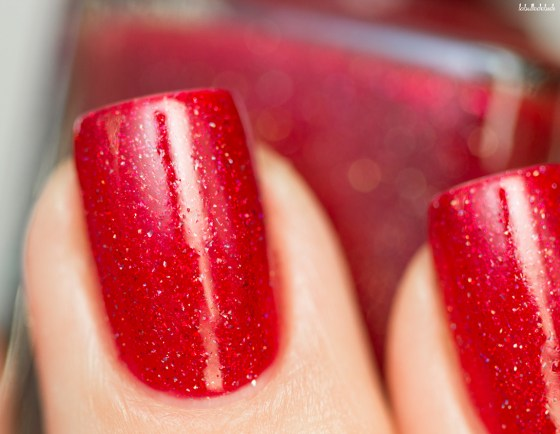 ilnp-winter-2016-stopping-traffic_12