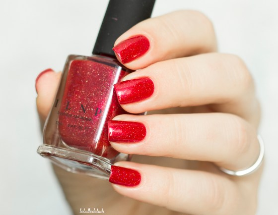 ilnp-winter-2016-stopping-traffic_20