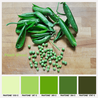 lacaccavella, foodcolors, colorpalette, peas, piselli, verde, green