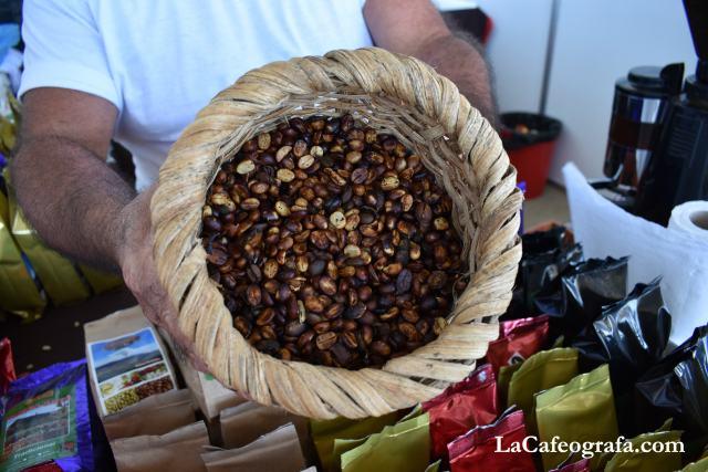 El café con proceso miel se ve así. Antes de quitarle el pergamino y tostarlo.