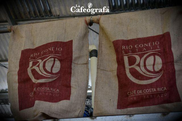 rioconejo19