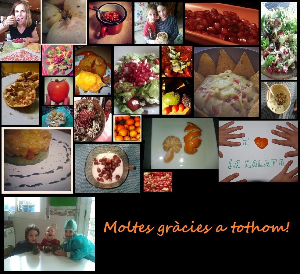 Mosaic de totes les fotos participants al primer concurs de fotos de la Calafa