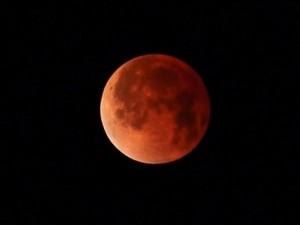 Foto del más reciente eclipse lunar visto desde Puerto Rico. (Foto Ferdinand Arroyo, de la Sociedad de Astronomía del Caribe).