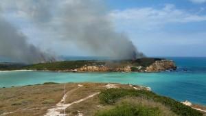 Vista del fuego que afectó unas 30 cuerdas en el sector Playuela de Cabo Rojo (Foto Radiocb React Mayaguez).
