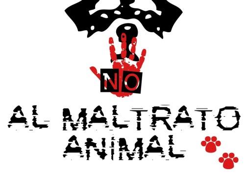 no al maltrato animal 1