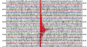 Gráfica del temblor del pasado 20 de febrero en Cabo Rojo (Fuente: Red Sísmica de Puerto Rico).