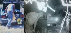Tres de los imputados, captados por cámaras, mientras hurtaban arena en Isabela (Suministradas DRNA).