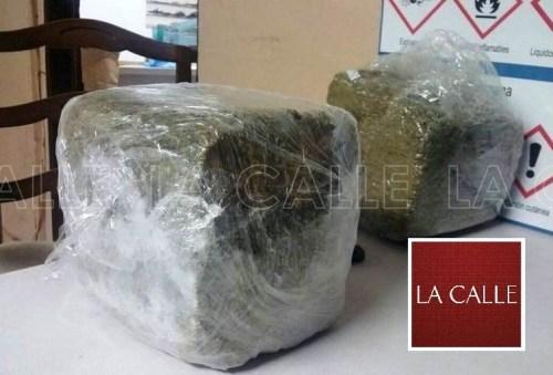 Marihuana ocupada durante un reciente allanamiento. A pesar de eso, no hubo causa para arresto (Suministrada).