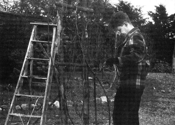 Lacan mit Leiter