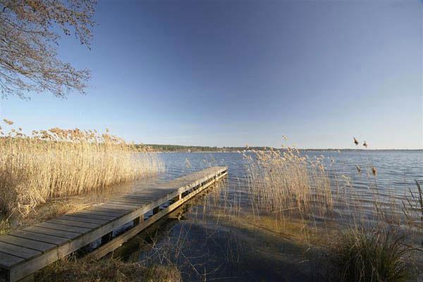 Location lacanau lac  location de maison sur la plage au bord du lac de lacanau  lacanau
