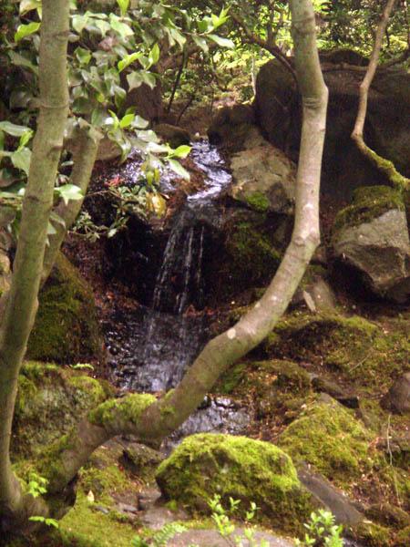Photo de Jardin Japonais  les plus beaux jardins du monde