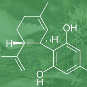 cannabis antitumorale