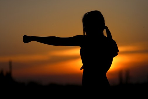 Silhouette Sunset Karate Sports Fight Resistance