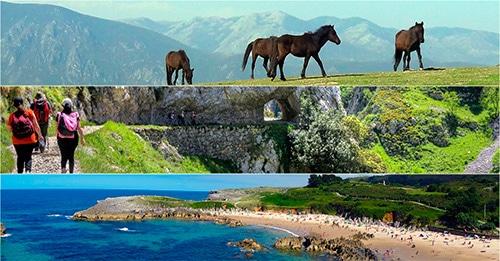 Que podemos ver en Asturias cerca de Oviedo - La Casa Azul de Las Caldas
