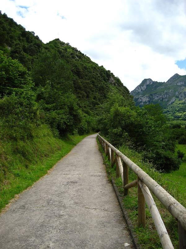 Senda-y-Ruta-del-Oso---Rutas-por-Asturias-con-Niños
