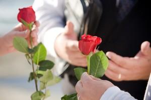 ceremonia-rosa-2