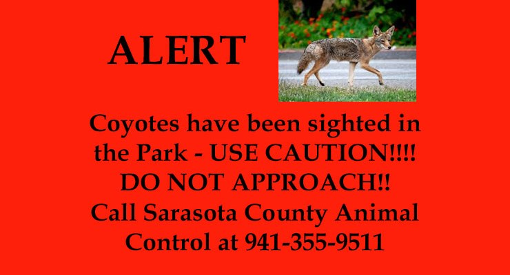 ALERT!! Coyotes Seen in the Park