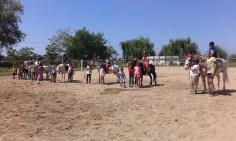 Campi estivi e corsi di equitazione alla Cascina di Carola Fattoria didattica scuola di equitazione