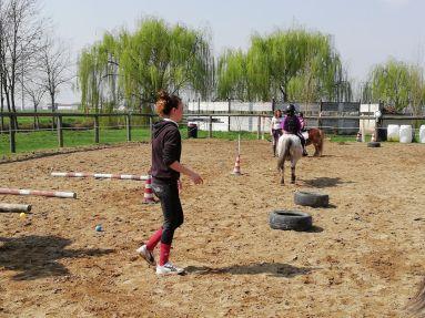 I pony games
