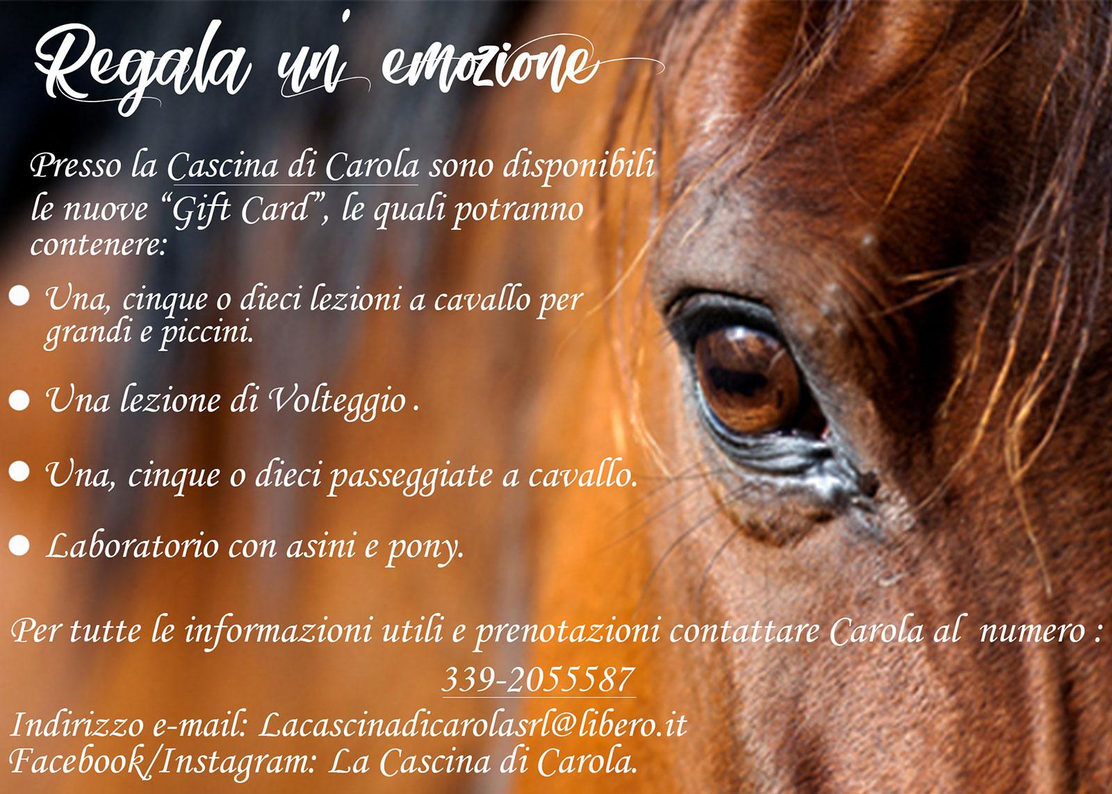 Gift card regala un corso di equitazione, una lezione, una passeggiata a cavallo, un laboratorio con asini e pony