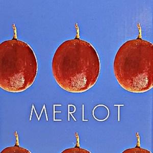 Domaine de preignes Merlot Rouge Pays d'Oc 5 litres