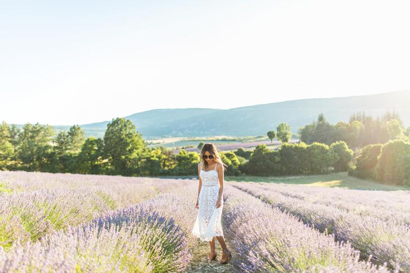 petite fashion blog, lace and locks, morning lavender dress, white lace midi dress, provence lavender fields, sault lavender, travel blogger, paris blogger