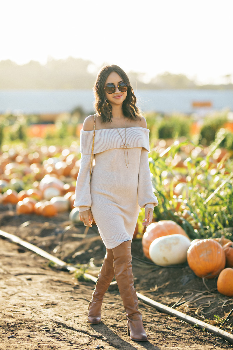 Lace and Locks Petite Fashion Blogger Fall Fashion