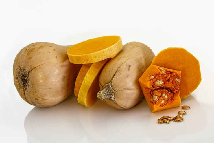butternut-squash-fresh-vegetable-soup-vegetable-53458.jpeg