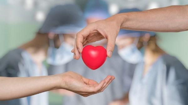 """""""Suma vida, dona órganos"""": SSM invita a sumarse a la donación altruista de órganos y tejidos"""