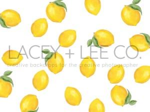 Painted Lemons Cake Smash Photo Backdrop