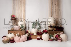 Pink and White Pumpkin fall themed Photography Backdrop