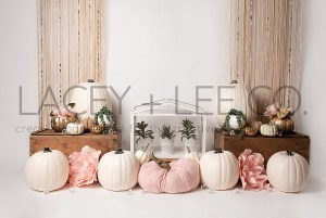 White Pumpkin fall themed Photography Backdrop