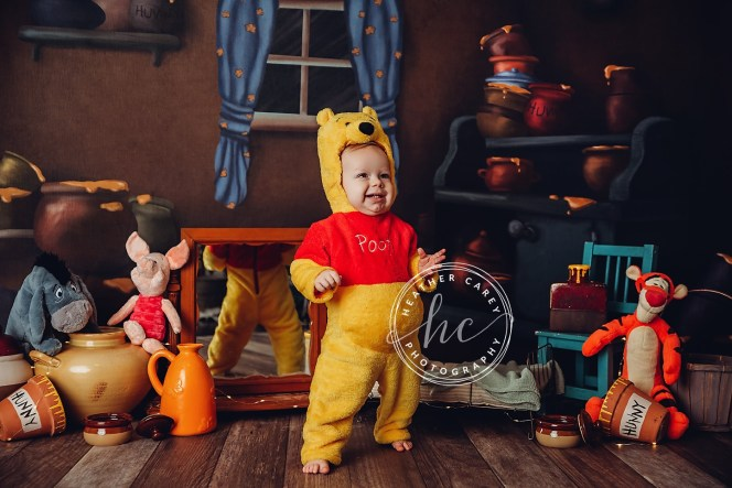 Inside Winnie the Pooh's House photography Backdrop