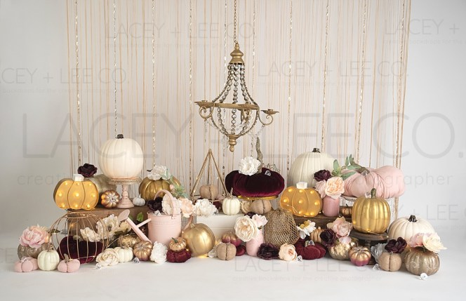 Fall pumpkin Glam Photography Backdrop