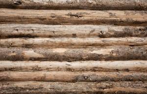 Unique Log Cabin Photo Backdrop