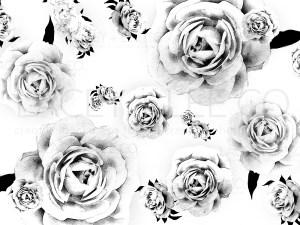 Black and White Roses Photo Backdrop
