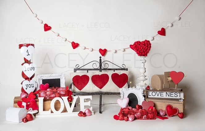 Valentines Day Love nest photo backdrop