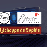 Tirage au sort matos - Beffroi 2018 - Zorg Effects / L'Echoppe de Sophie / Elixir Strings