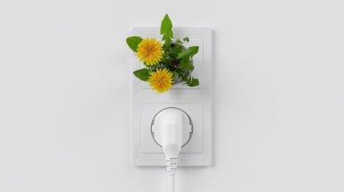 électricité énergie renouvelable