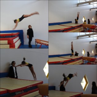 sauts1