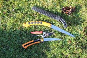 Werkzeuge zum Obstbaumschnitt