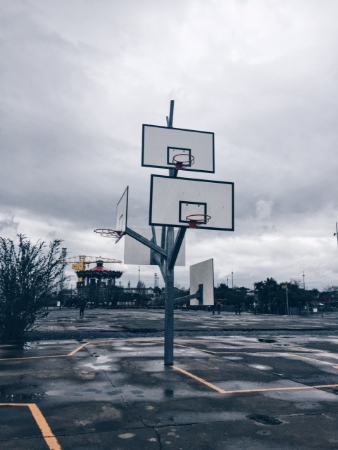 L'arbre à baskets de Nantes